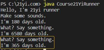 Java 对象和类执行结果5