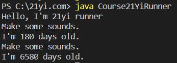 Java 对象和类执行结果3