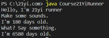 Java 对象和类执行结果4
